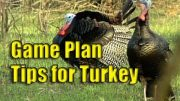 Game Planning for Turkey with Lee Clark