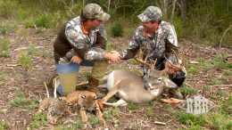 RBR Whitetail Ranch – An Overview