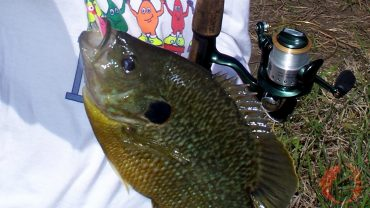 Short Fishing Trips For More Fish – Feature Image