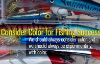 Consider Color for Fishing Success