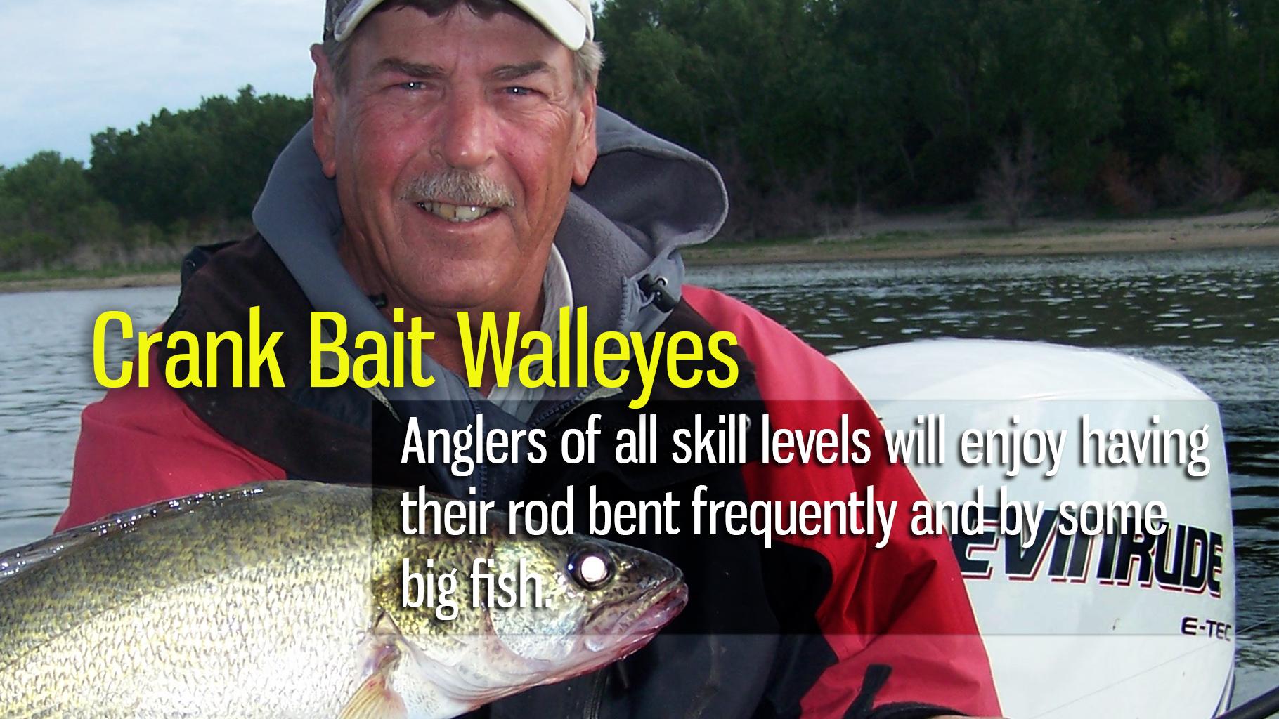 Crank Bait Walleyes