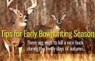 Tips for Early Bowhunting Season