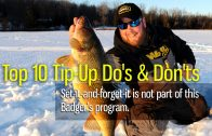Top 10 Tip-Up Dos and Don'ts