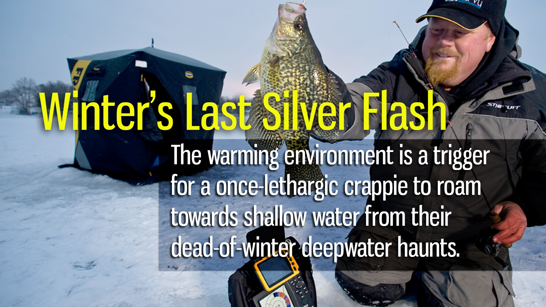 Winter's Last Silver Flash