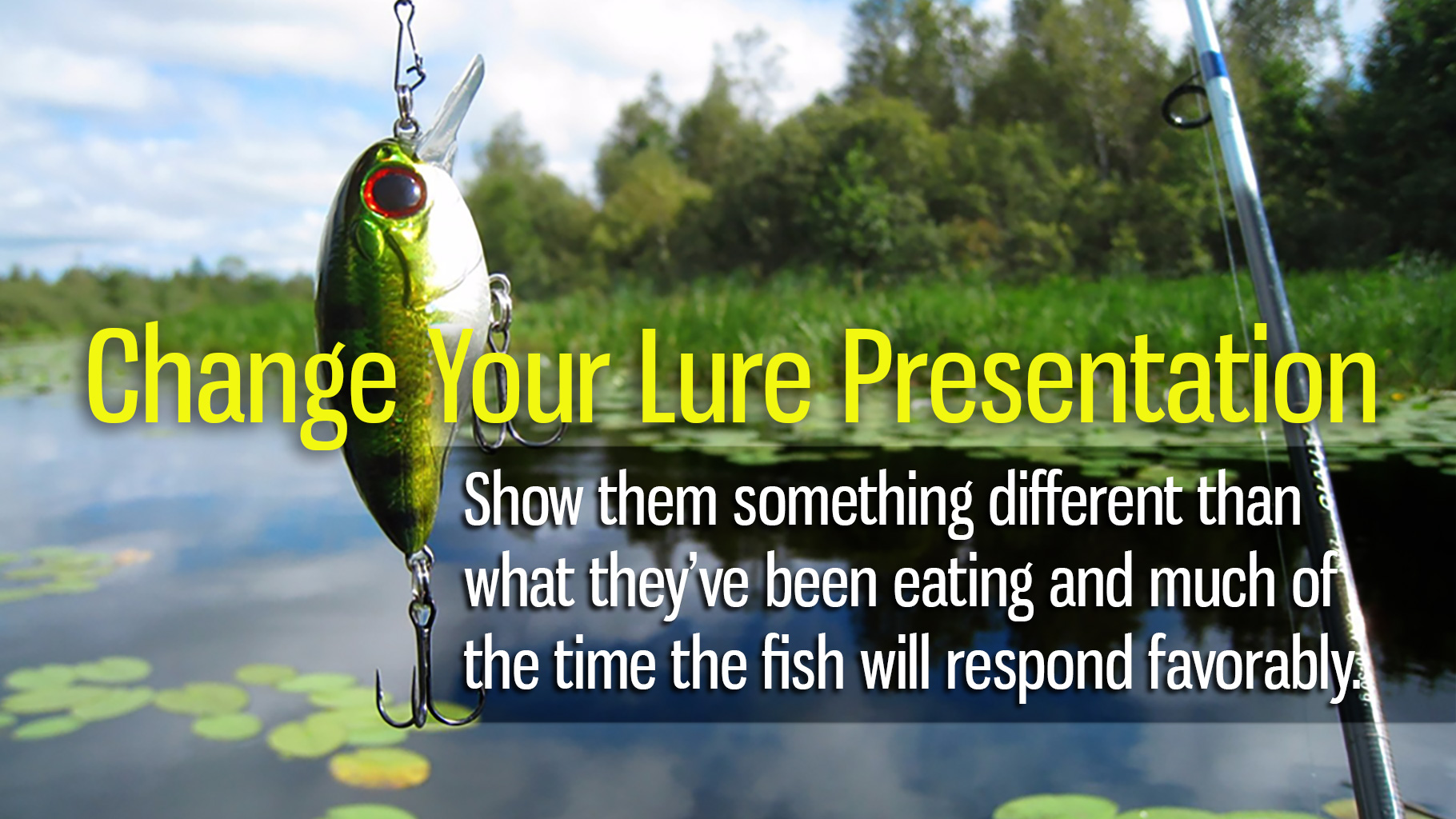 Change Your Lure Presentation For More Fishing Success