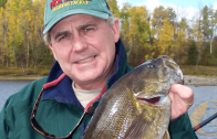 Autumn River Walleyes