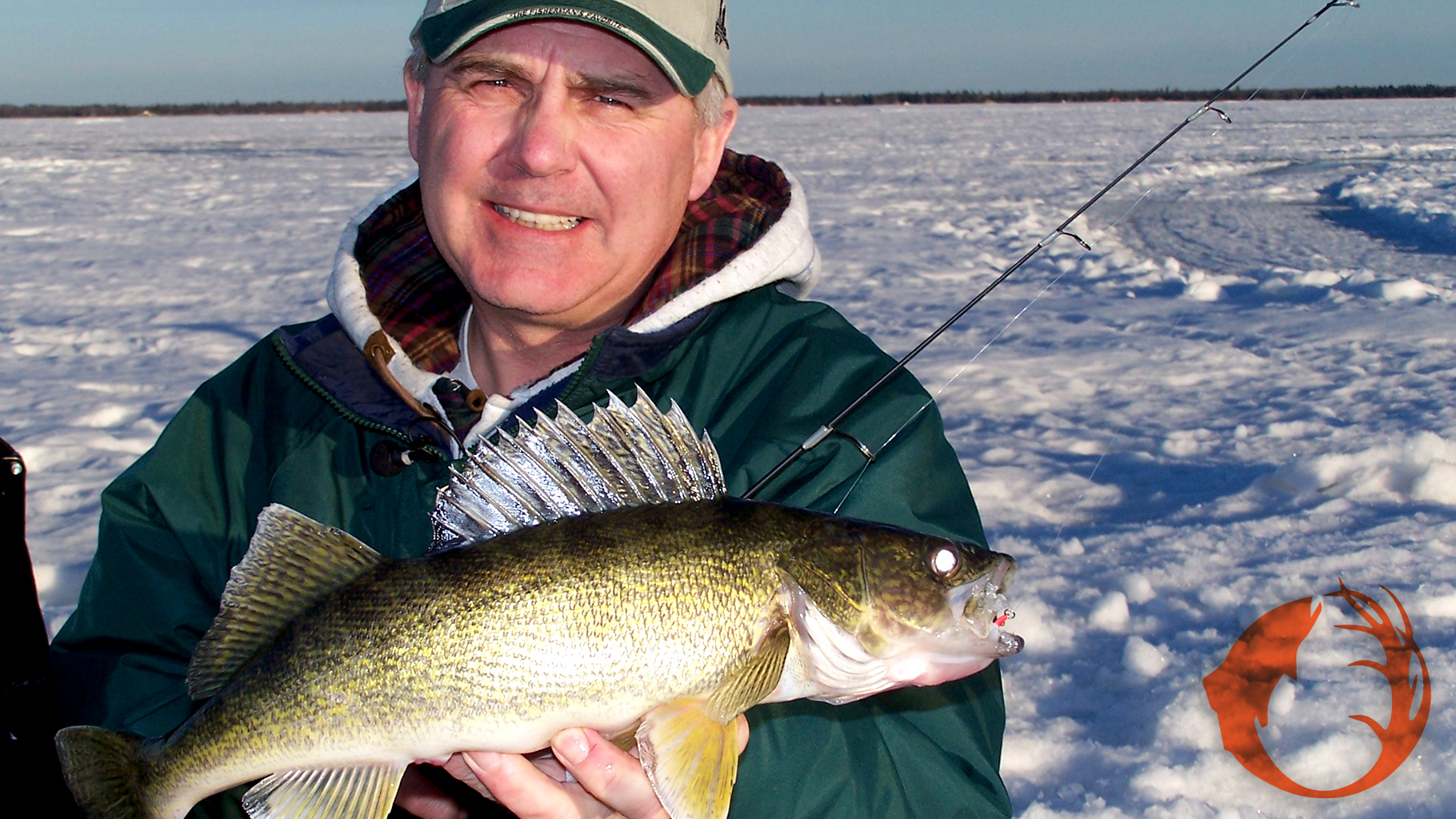 Walleyes Right Now