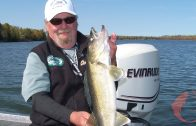 Fall For Trophy Walleyes