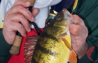 Be Versatile for More Ice-Fishing Success