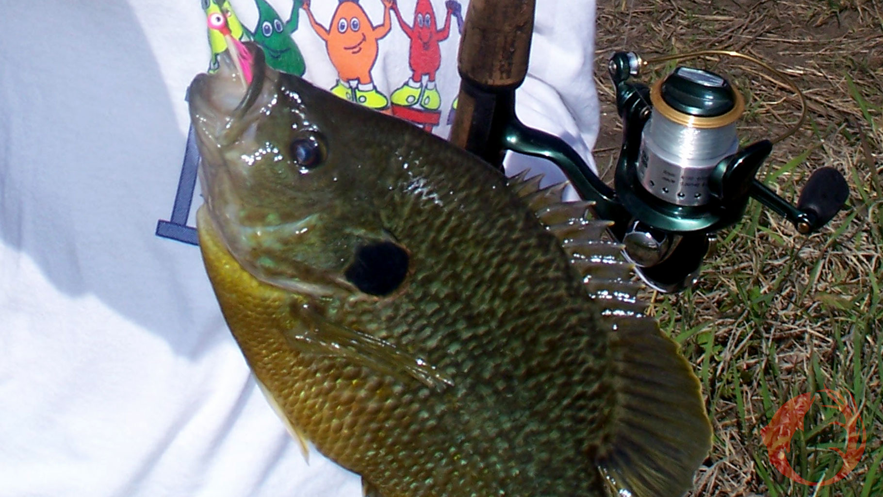 Short Fishing Trips For More Fish