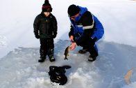 Sonar for Ice-Fishing