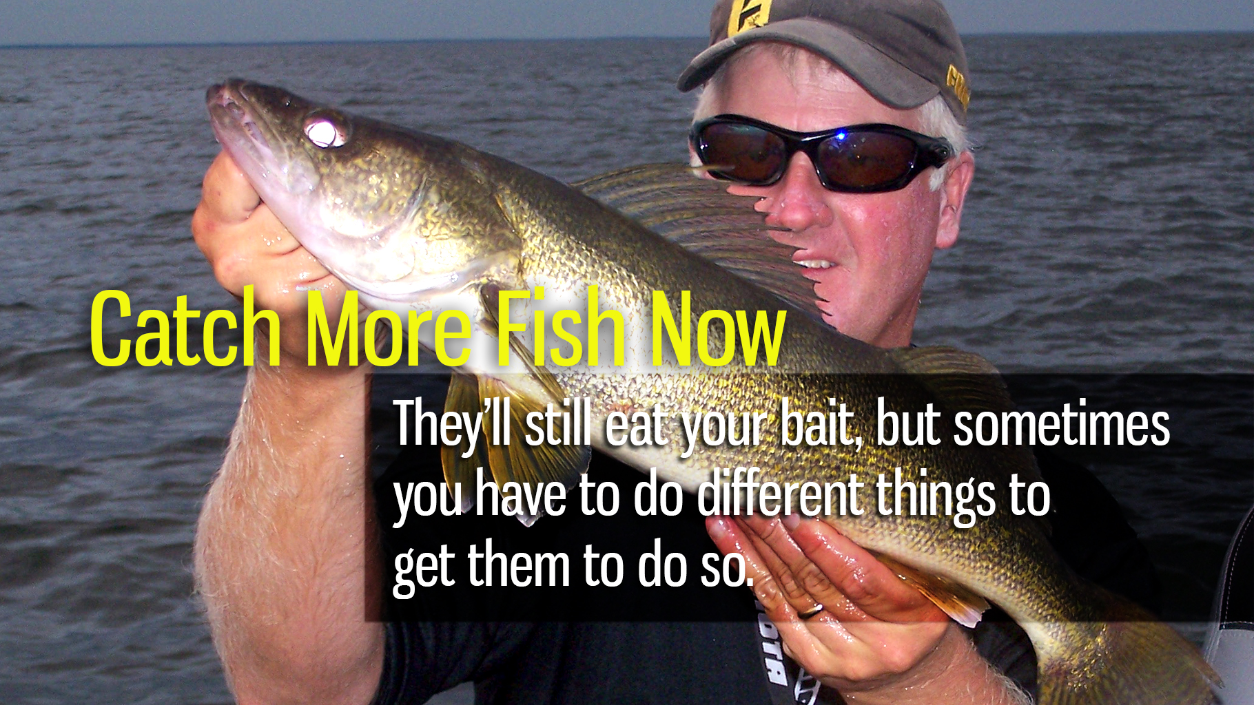 Catch More Fish Now