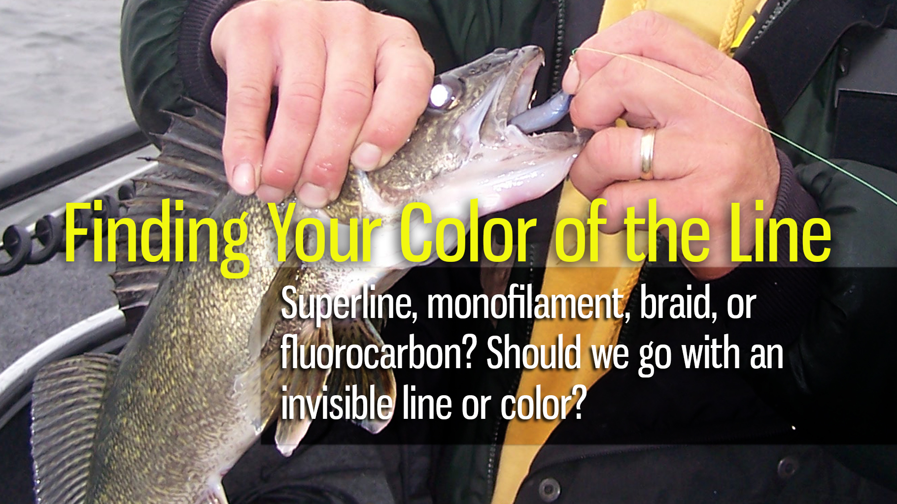 Finding Your Color of the Line