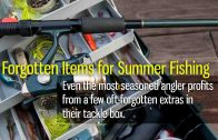 Forgotten Items for Summer Fishing