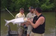 Asian Carp Bowfishing – EXTREME SHOT!
