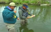 Fly Fishing Montana – Beaverhead River