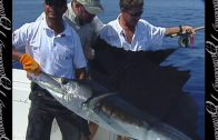 Fly Fishing Pacific Sailfish in Costa Rica