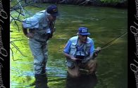 Fly Fishing: Perfecting Your Cast