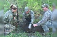 Mississippi Turkey Hunt and Wild Boar Hunt Full Show